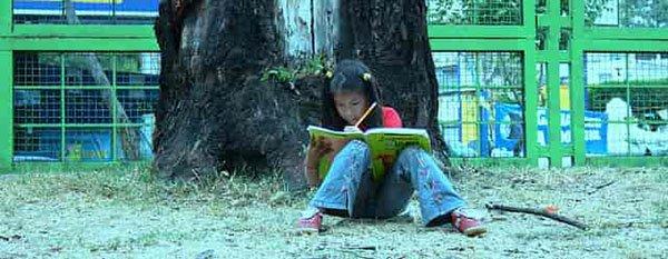 libros para aprender a leer y escribir